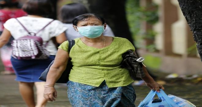 Myanmarda Domuz Gribi Tehdidi