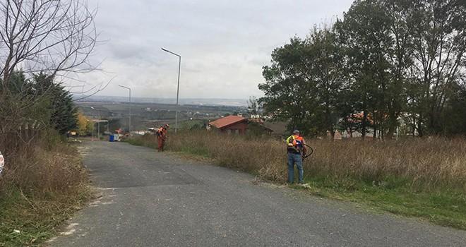 Çatalca'da Çevre Temizlik Çalışmaları Tüm Hızıyla Devam Ediyor
